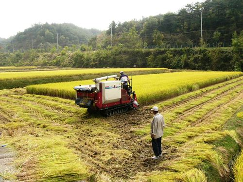 Harvester_at_work